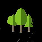 Miyawaki Forestry_